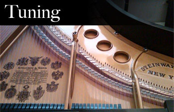 New Jersey Piano Tuning